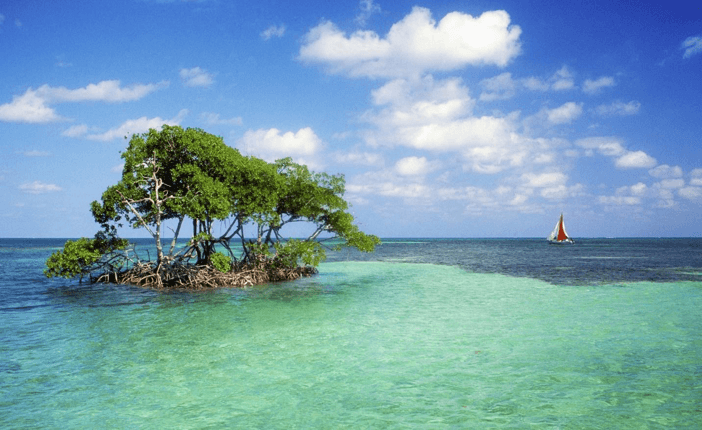 Belize sea