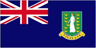 BVI پرچم