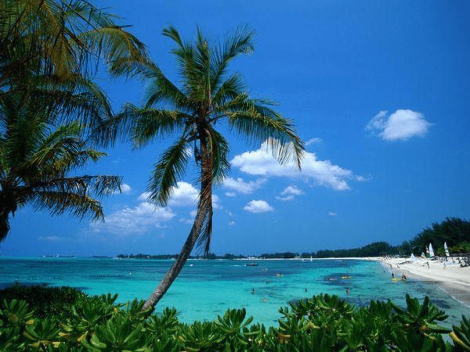 Bahamian Company