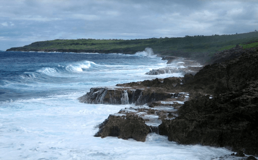 Niue company