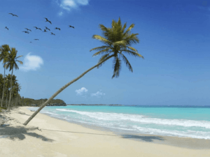 List Offshore Banks Cayman Islands