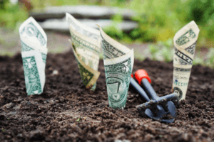 dollars in soil