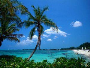 Bahamian စီးပွားရေးလုပ်ငန်း