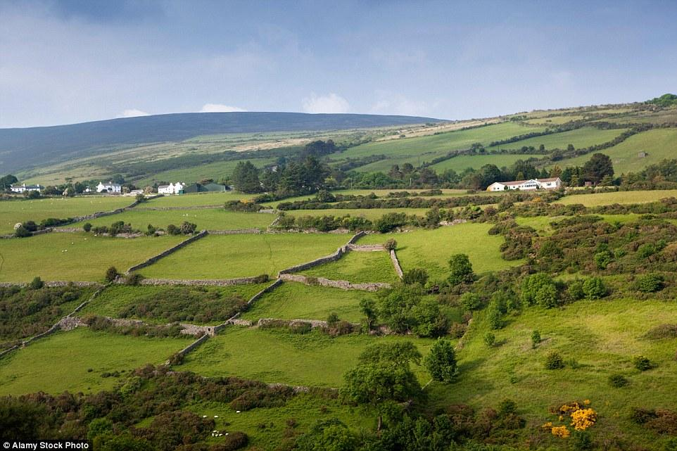 Isle Of Man Farm