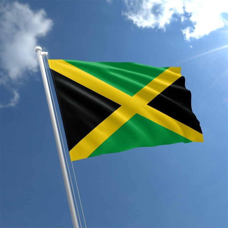 Jamaica Limited Liability Company Llc Formation And Benefits