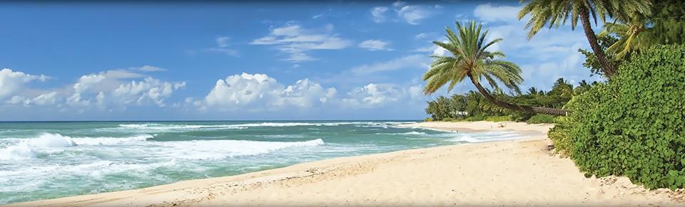 Beach in Niue
