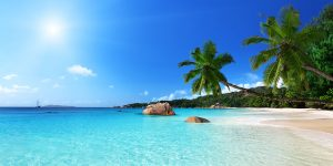 Seychelles Corporation