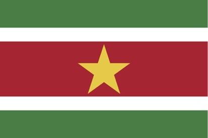 Surinam Məhdud Məsuliyyətli Cəmiyyəti (NV)